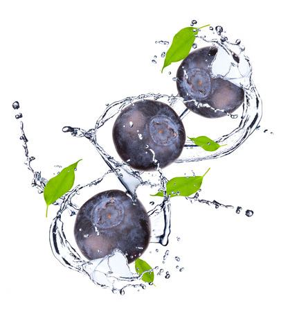 water colour: Blueberries and leaf with splash isolated on white Stock Photo