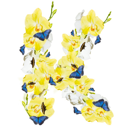 Letter K orchid and butterfly, spring isolated on white background Stock Photo