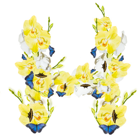 Letter H orchid and butterfly, spring isolated on white background