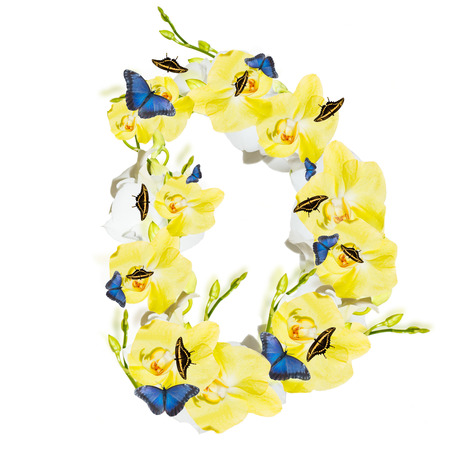 Letter D orchid and butterfly, spring isolated on white background
