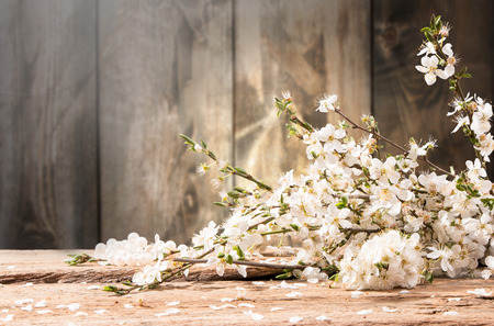 perls: Spring flowers, heart and pearls on wooden background Stock Photo