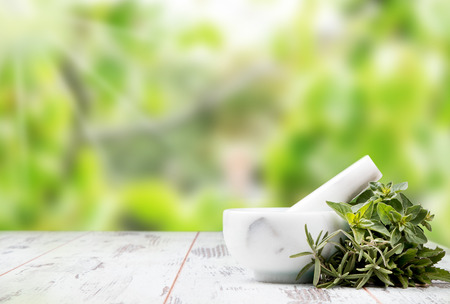 Herbs on wood background. Mint, thyme, balm and other medicinal herbs