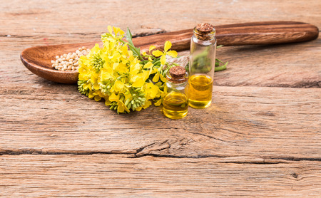 biodiesel: Rape oil and flower on wooden table Stock Photo