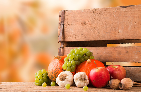 medium group of object: Autumn still life with pumpkins and autumn flower on nature background