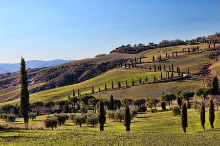 val dorcia: Tuscany Val dOrcia Landscape (road of cypress) HDR
