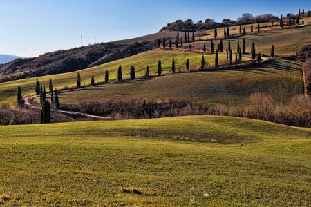 val dorcia: Tuscany Val dOrcia Road of Cypress