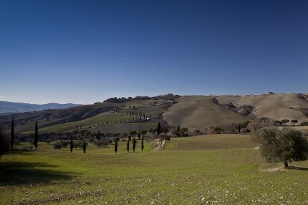 val dorcia: Tuscany Val dOrcia Landscape (road of cypress) Stock Photo