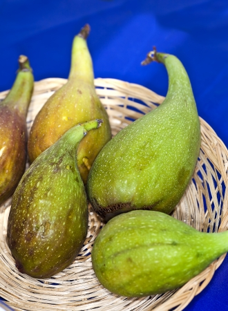 rosales: Figs type Longue dAoutIt a variety of figs from France that is grown and appreciated in the territory of Eboli in Southern Italy