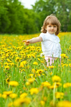 Little girl in a dandelion meadow showing with the hand to the side photo