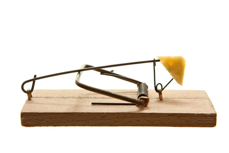 Mouse trap with cheese isolated on white background photo