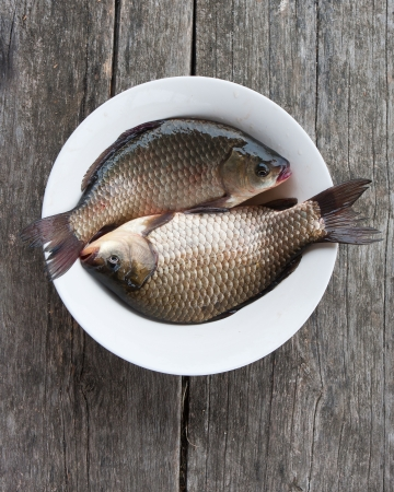 Two fresh carps in a plate on a wooden background photo