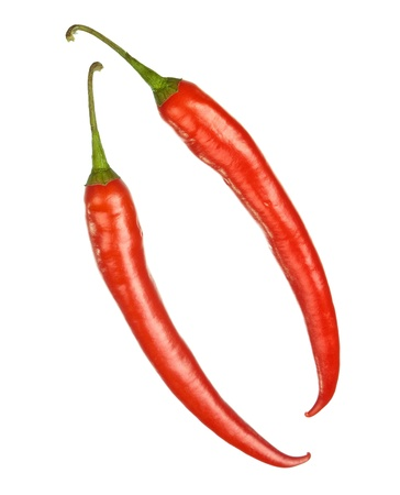 Two whole red hot chilly peppers isolated on white photo