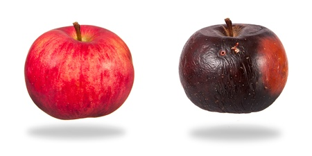Two apples, red and rotten  isolated over white background Stock Photo - 15911443