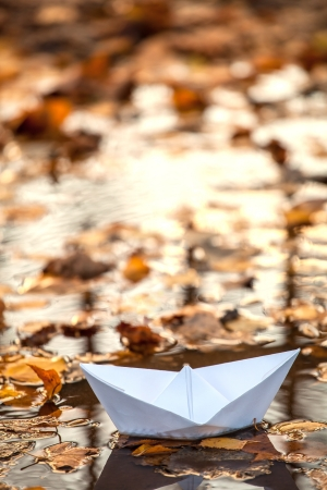 Origami paper boat in a water and fall leaves