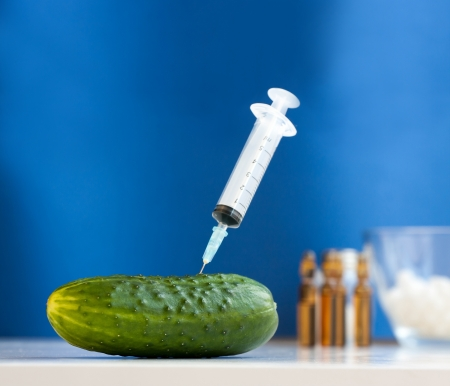 Cucumber with syringe  Bio genetics research of food against blue background photo