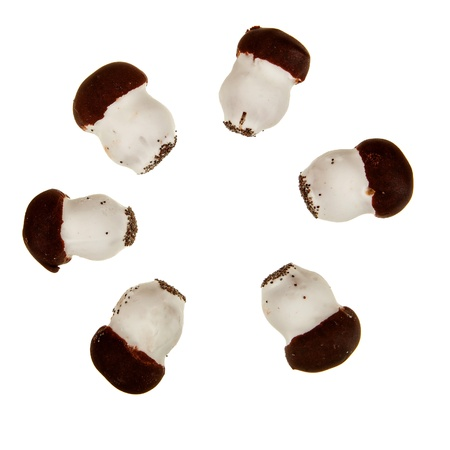 Cookie mushrooms with chocolate aranged in circle isolated over white photo