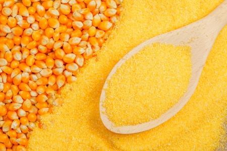 Schep met maïs graan in maïsmeel Stockfoto