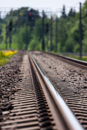 forest railroad: Railroad leading to green forest. Shallow depth of field.