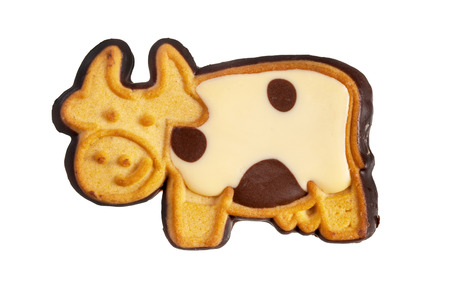 bisquit: Cookie cow isolated over white Stock Photo