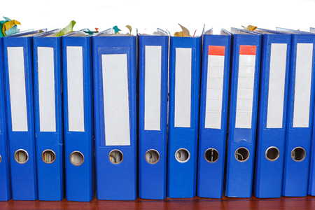 dossier: Row of blue office folders with blank labels on desk