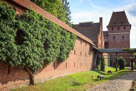 teutonic: MALBORK, POMERANIA, POLAND - July 22, 2015: The wall and the tower of the castle of the Teutonic Order in Malbork (Marienburg) Pomerania region