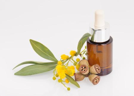 Eucalyptus leaves, flowers and fruit, Eucalypt oil