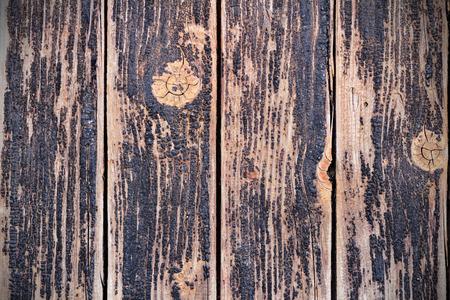 impregnated: Resina del legno invecchiato primo piano impregnato