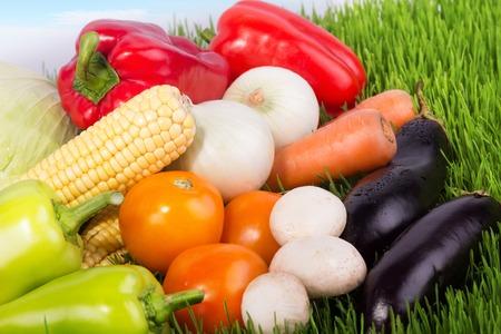 verduras: Verduras en la hierba, verduras de cosecha frescas, dieta sana, dieta vegetariana, nubes en el cielo azul, hierba verde, verduras de monta�a, verduras, primer plano Foto de archivo
