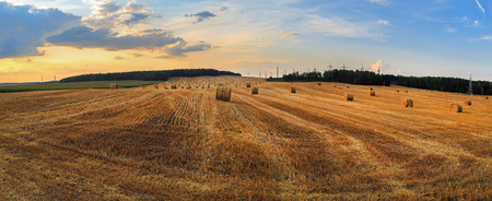 Straw bales in the sunset. photo