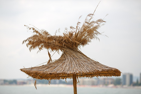 Straw beach umbrellas on a background of the cloudless sky photo