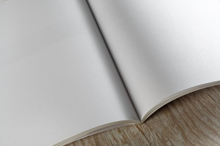business book: Fragment of blank opened magazine on light wooden background with soft shadows close-up. For design presentations and portfolios.