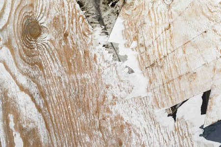tattered: Old grunge wooden surface with tattered paper.
