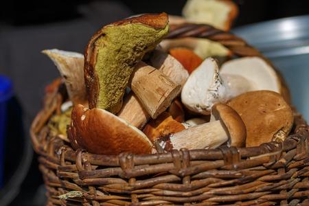 basketful: Closeup of a basket of mushrooms. Shallow depth of field. Selective focus. Stock Photo