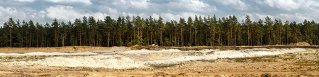 pits: Panoramic landscape with pine forest and sand pits.