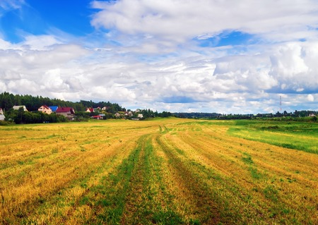 non cultivated land: Rural landscape with field of cut grass and bright blue sky with cumulus clouds. Bright sunny day. Stock Photo