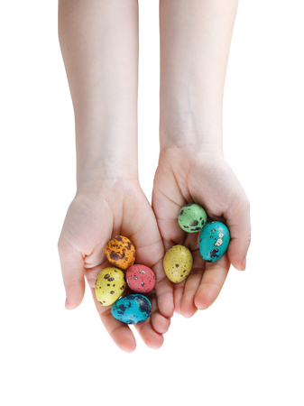 spotted: Colored easter eggs in hands. Quail eggs. Isolated with clipping pathon a white background. Top view. Stock Photo