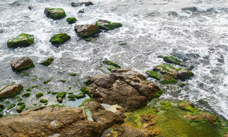 large rocks: Close-up of sea surf. Rocky shore with sea water and large rocks covered with algae.