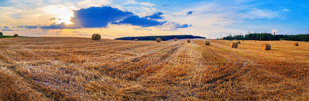 Autumn field with hay bales after harvest. Beautiful sunset sky. Rural landscape with haystacks. Panoramic shot.