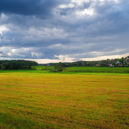 Overcast summer day in the countryside. Field of grass and sky with clouds.