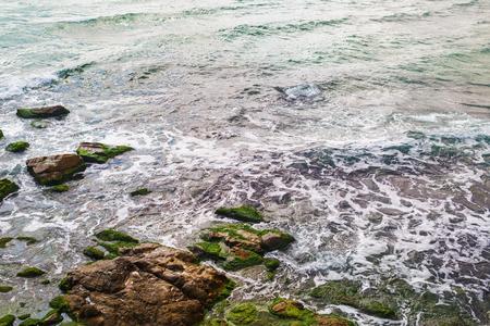 Sea surf and rocks covered with algae. Closeup of coastline.