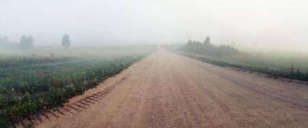 Gravel road in the fog. Rural landscape. Panoramic shot.