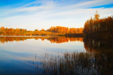 Scenic autumn landscape. The blue sky, yellowed trees and bushes are reflected in the calm surface of the lake.