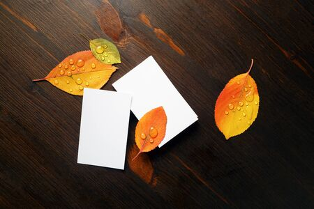 Blank white business cards and bright autumn leaves on wooden background. Flat lay. 스톡 콘텐츠