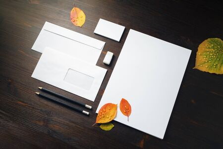 Blank branding identity set and bright autumn leaves with water droplets on wooden background. Corporate stationery template.