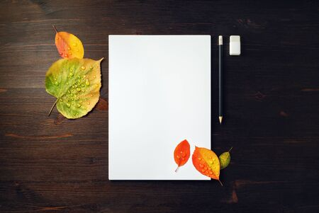 Blank letterhead, pencil, eraser and bright autumn leaves with water droplets on wooden background. Flat lay.