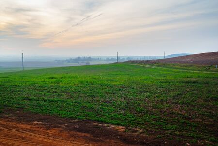 Evening rural landscape. Hill covered with green grass against sunset sky. 스톡 콘텐츠