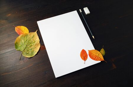 Blank stationery set: letterhead, pencil, eraser and autumn leaves with water droplets on wood table background. Template for placing your design.