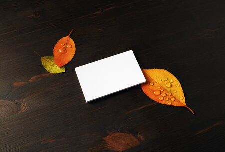 Blank business card and autumn leaves on wooden background. Responsive design mockup.