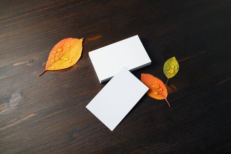 Photo of blank white business cards and autumn leaves on wooden background. Copy space for text.