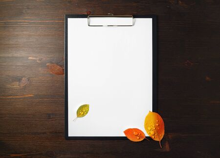 Blank letterhead in clipboard and bright autumn leaves with water droplets on wooden background. Copy space for text. Flat lay. 스톡 콘텐츠